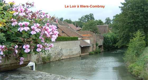 Le Loir à Illiers-Combray
